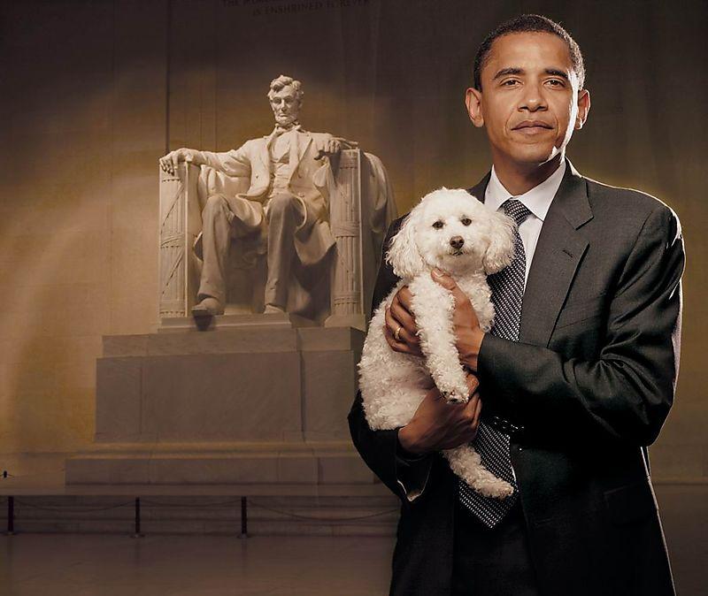 Obama-puppy