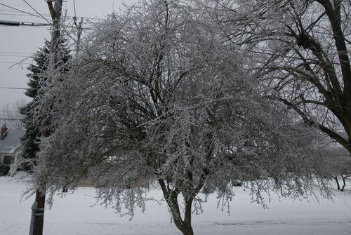 Ice-ice