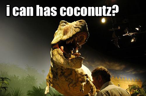 Coconutz